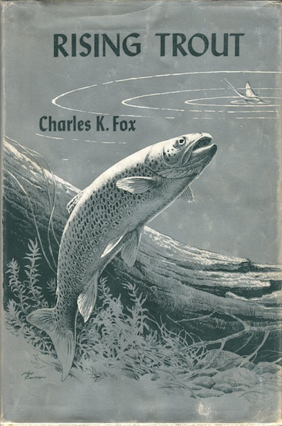 Rising Trout. Charles Fox.