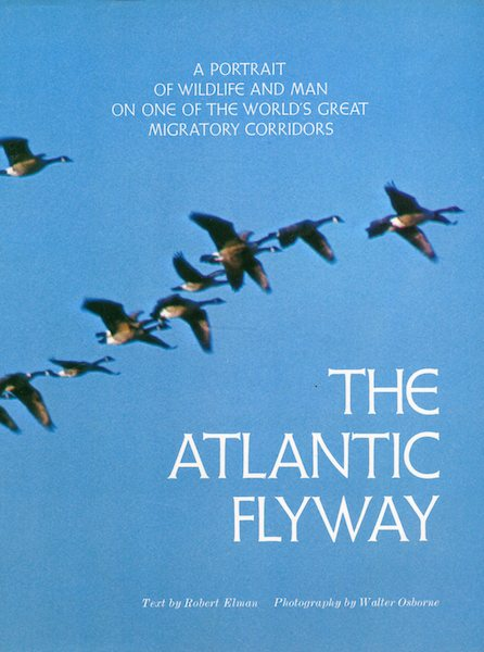 The Atlantic Flyway. Robert Elman.
