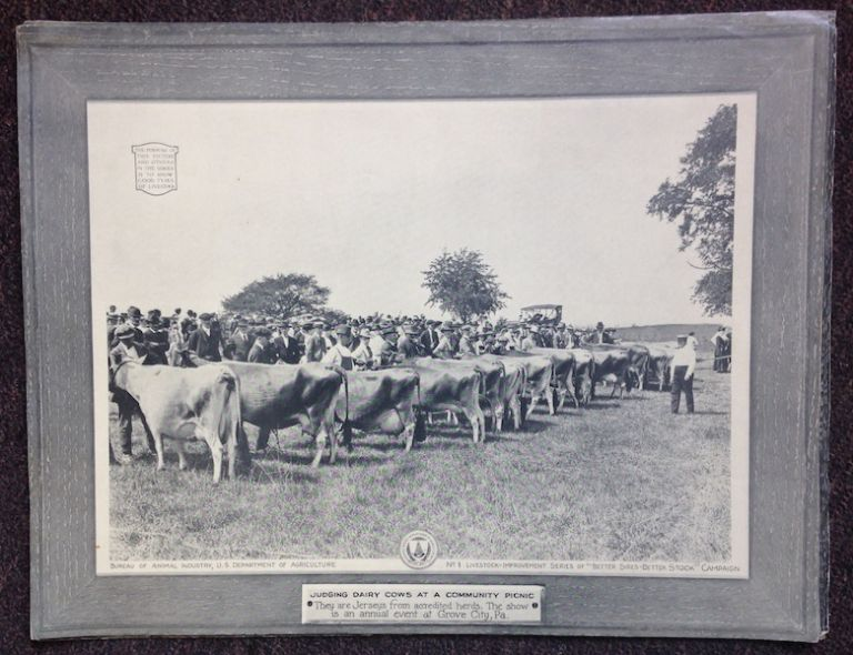 "(Portfolio of 10 Photographic Plates); ""Better Sires - Better Stock"" Livestock Improvement Series Campaign. L. W. Beeson."
