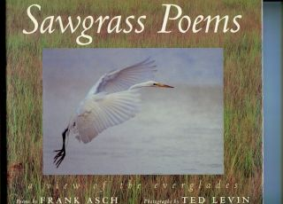 Sawgrass Poems: A View of the Everglades. Frank Asch, ted Levin